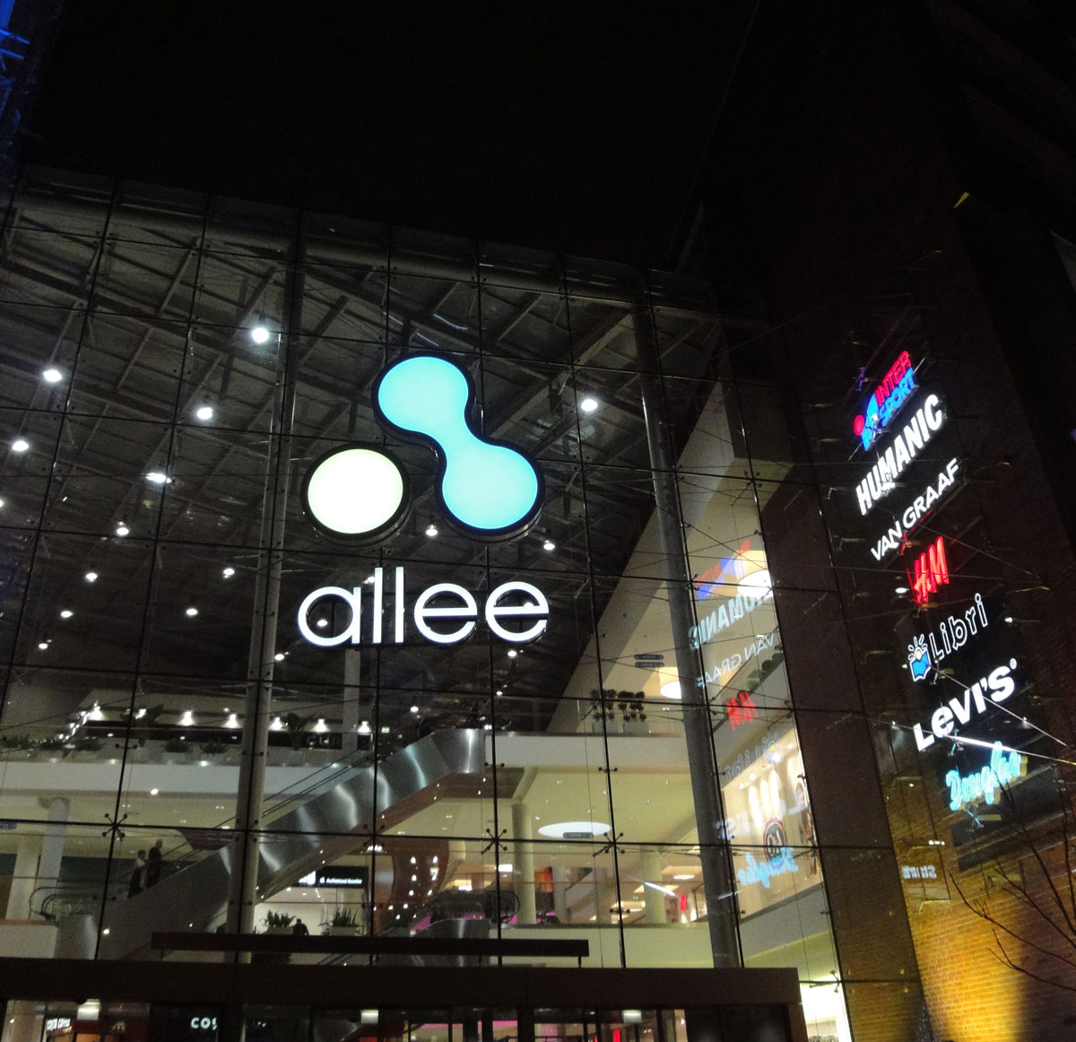 View of Allee from outside at night